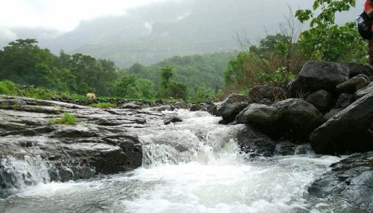 Eastern Ghats Mountain Range of India
