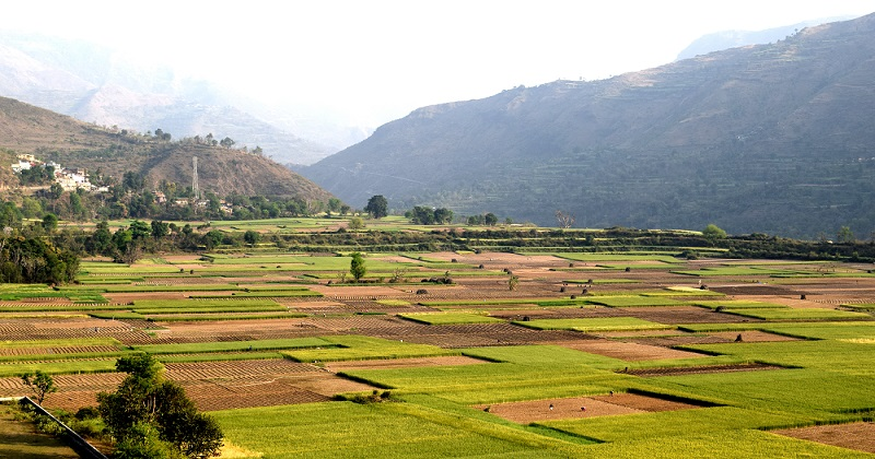 Farm in Koti, Uttarakhand. The image was taken during my ride from Roorkee to Tiuni.