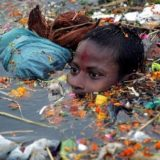 Case Study of Ganges River Pollution