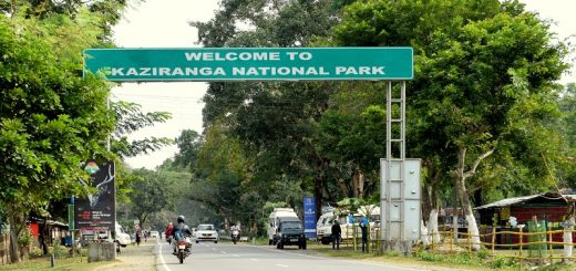 Entrance Gate of Kaziranga National Park
