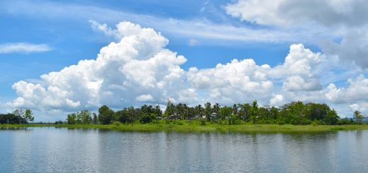 Damboor Lake In Tripura