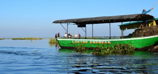 A boat in Loktak Lake Manipur